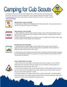 Pack campout: new scout adventure achievements