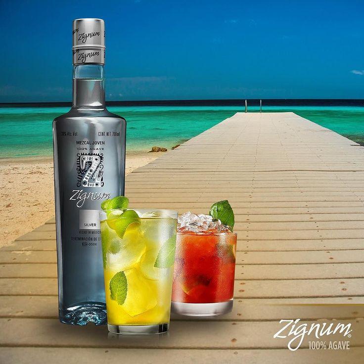 Sabemos que lo estáis deseando. Tranquilos ya ha llegado la primavera.   #mezcal #ZignumMezcal #silver #Zignum #agave #mexico #Oaxaca #cocktails #primavera #verano #summer #spring #springcoming by zignummezcal_spain March 22 2016 at 08:01AM