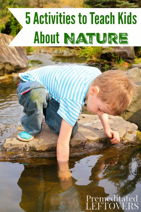 Kids are naturally curious, so getting them engaged in nature is easy. Explore the outdoors together with these 5 Activities to Teach Kids About Nature. Family life idea.