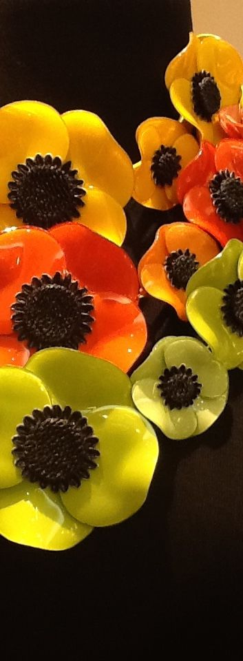 colliers Anemone!