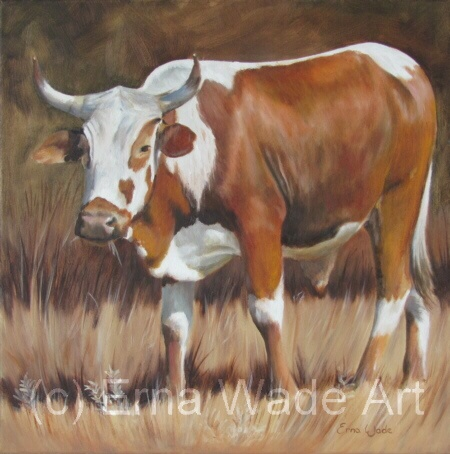 """Nguni 44.   Oil on Stretched Canvas.  450x450mm (18 x 18"""")   $160  SOLD"""