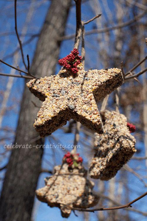Birdseed-ornament-tree-hanging