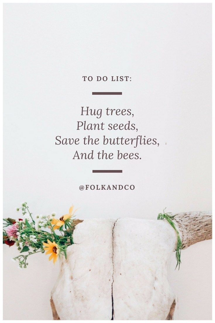 To Do List Hug Trees Plant Seeds Save The Butterflies And