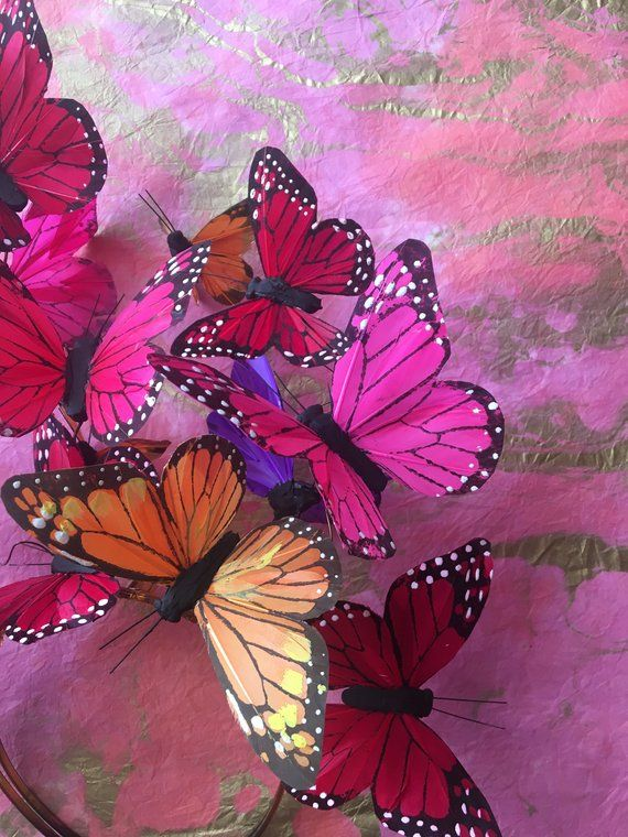The Social Butterfly Multicolor Fascinator Headdress Etsy Photo Wall Collage Wall Collage Art Collage Wall