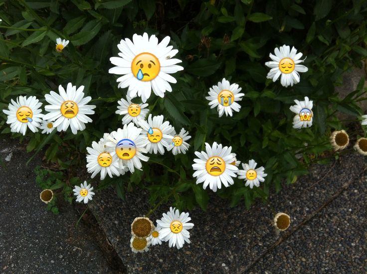 MOUZERON Flowers, Grunge, Emoji wallpaper