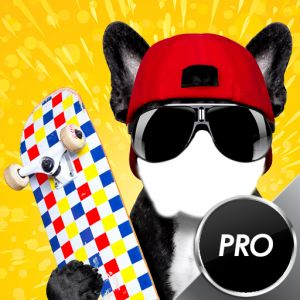 Funny Dogs Photo Montage  BUY NOW      $0.99   Montage funny face with sharp dog teeth, bone in the mouth. Funny photo montage is great relaxing app for smartphones. Download this top photo editor and become best funny photo maker. Select image you like the most, set funny dog photo background, and edit photo in best way using this popular photo frame editor. How to use Photo Montage: * Select a photo from image gallery of take a new one * Choose Photo Montage frame you like the most..