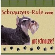 All About the Miniature Schnauzer   Schnauzers Rule.  Great web site.  All kinds of information and pictures!
