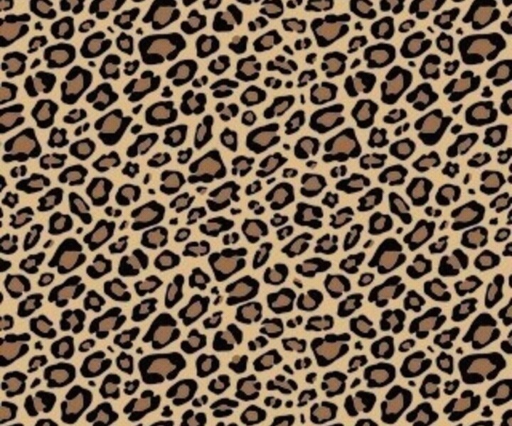84 best cute phone wallpaper images on pinterest background images leopard print cheetah print wallpaperwallpaper for phonewallpaper voltagebd Choice Image