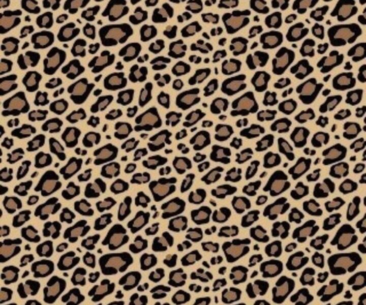 Leopard Print ♡ | Cute Phone Wallpaper | Pinterest