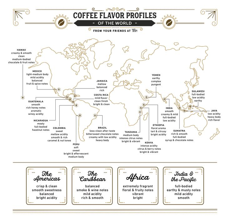 A Beginner's Guide to Coffee Flavor Profiles of the World   Extra Crispy