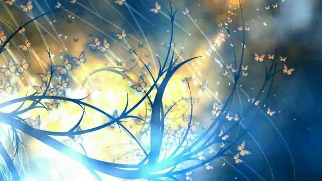 Metamorphosis is a generative, algorithmic animation programmed entirely in Processing (www.processing.org)  Music is by Boards of Canada.  The same animation system is now available as 'Zio' - an interactive iPhone app - www.itunes.com/apps/zio  my website- www.butterfly.ie