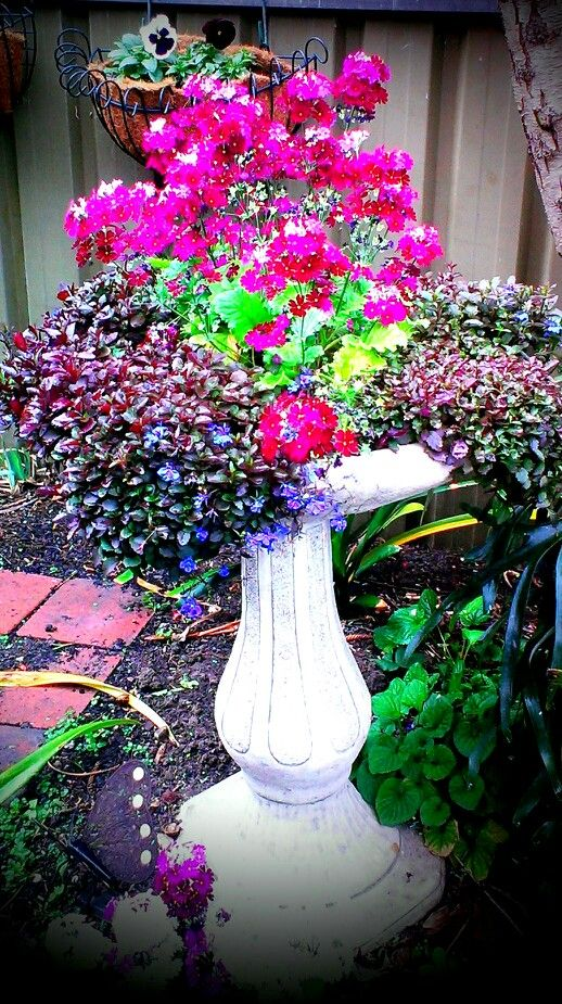 My happy recycled birdbath.