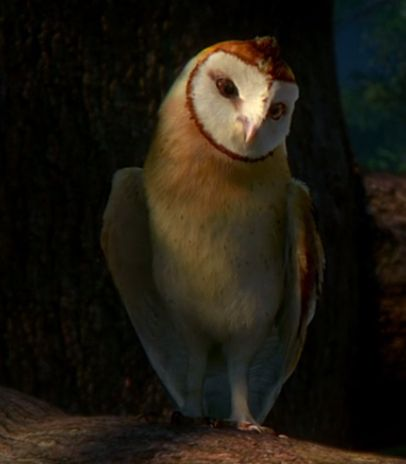 """legend of the gardians the owls of ga""""hoole 