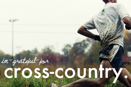cross-country: Cross Country Track, Running 3, Country Runner, Fitness Quotes, Fitness Motivation, Fitness Running, Country Running
