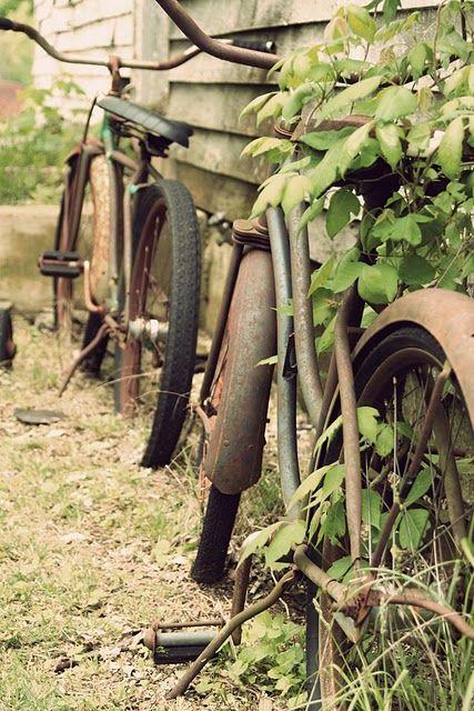 rusty bike beautiful lomo - photo #20
