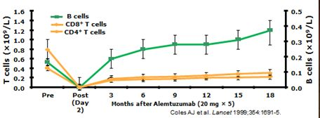 Alemtuzumab kills B cells. Not Really a Stepford Wife   So we talked about our new paper that came out yesterday.David Baker; Samuel S. Herrod Cesar Alvarez-Gonzalez Gavin Giovannoni; Klaus SchmiererInterpreting Lymphocyte Reconstitution Data From the Pivotal Phase 3 Trials of Alemtuzumab.JAMA Neurol. Published online June 12 2017. doi:10.1001/jamaneurol.2017.0676  IMPORTANCE Alemtuzumab a CD52-depleting monoclonal antibody effectively inhibits relapsing multiple sclerosis (MS) but is…