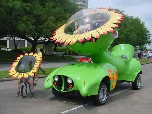 54 Best Funny Cars Images On Pinterest Funny Cars Automobile
