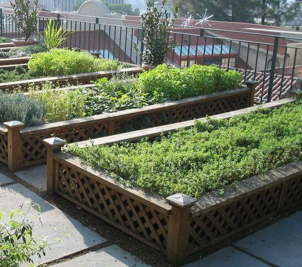 Roof Top Garden Terrace Garden Kitchen Garden Vegetable: 29 Best Images About Moestuin Op Het Dak On Pinterest
