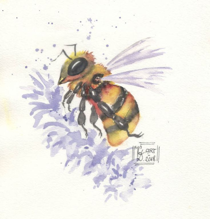Biene auf dem Lavendel