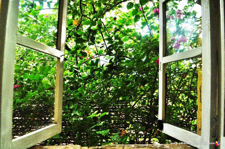 El verde se apoderó de la ventana Santa Fe de Antioquia