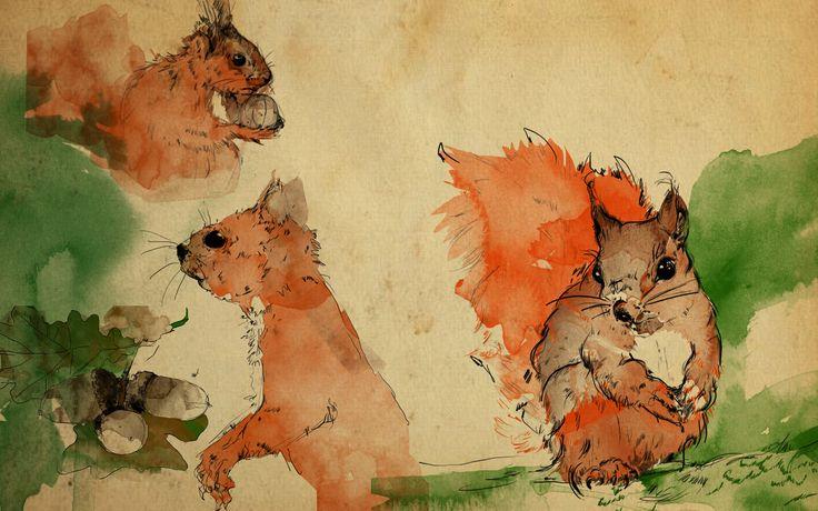 #autumn #squirrel #sketch