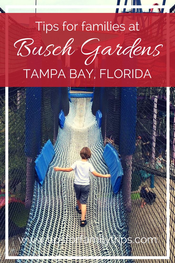5 tips for making the most of your day at Busch Gardens Tampa Bay with young children | tipsforfamilytrips.com | family travel | summer vacation | spring break | Florida | vacation ideas