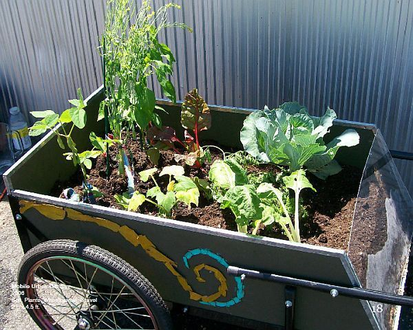 Urban Gardening Ideas every urban garden should feature a bbq area Seven Cool Mobile Gardens To Make Urban Areas Clean And Green