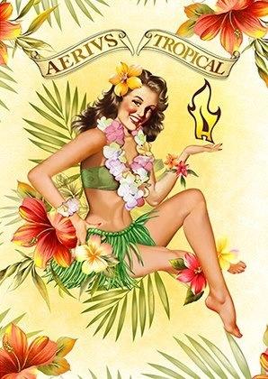 Pin up hawaiana, ícone da marca AERIVS para 2013!!!