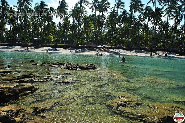 Praia dos Carneiros, Pernambuco - Uma das melhores praias do mundo!