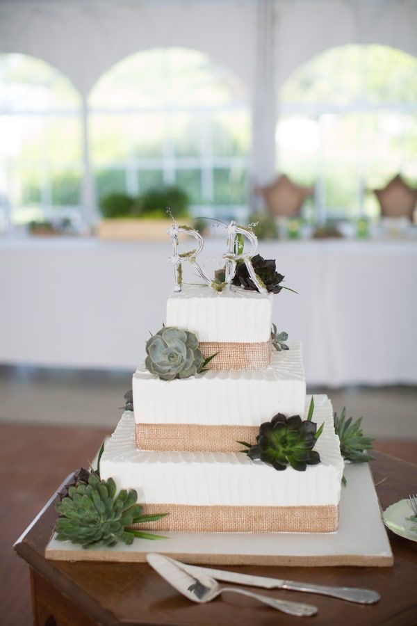 1665 best Rustic Wedding Cakes images on Pinterest   Conch fritters ...