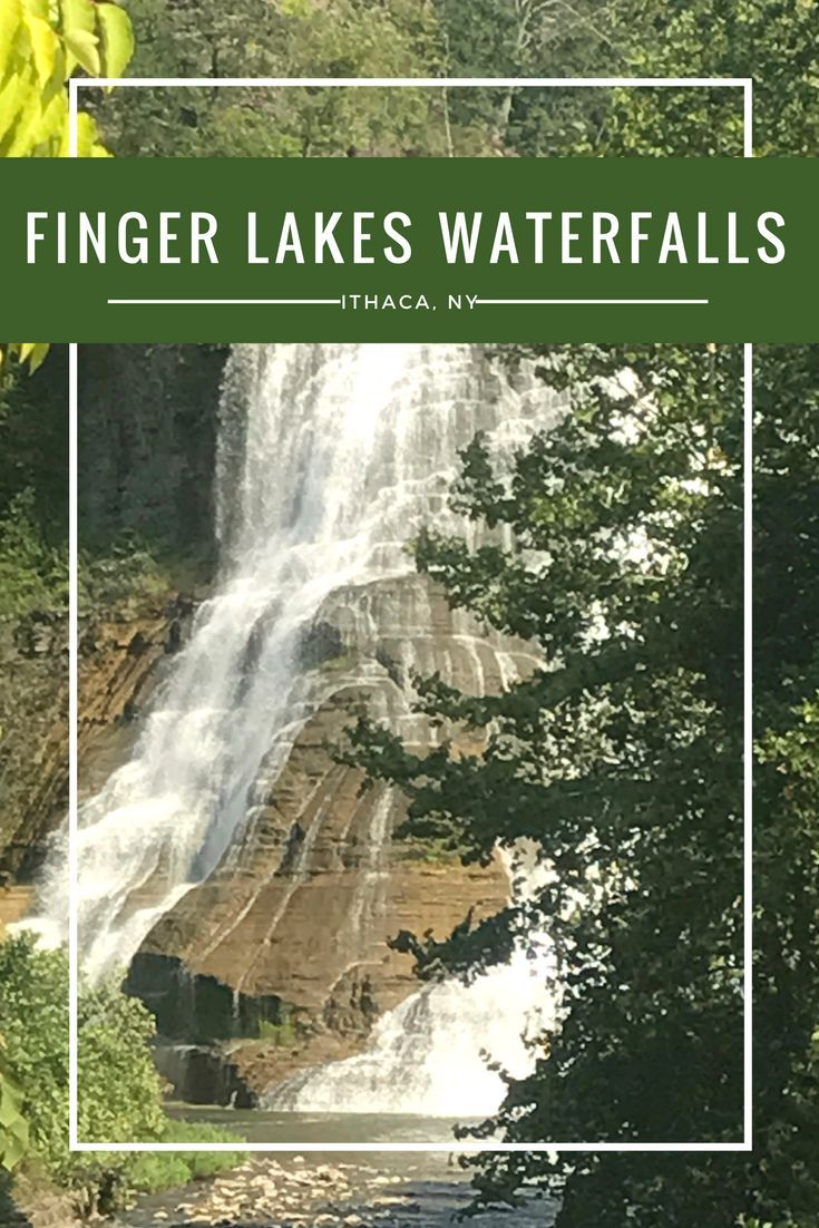 Things To Do For Kids In Finger Lakes