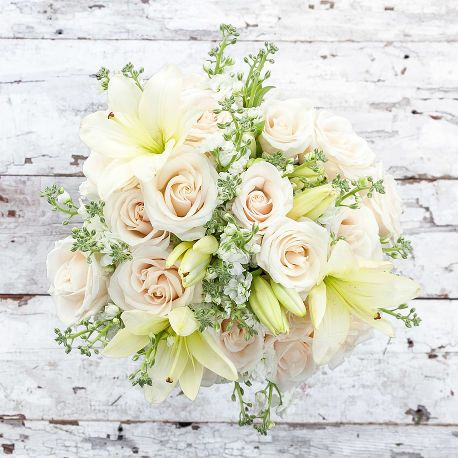 """Eggnog 