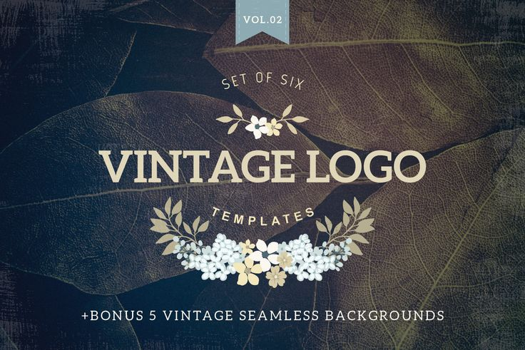Vintage logo templates Vol 2 by Lisa Glanz on Creative Market