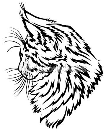 Мейн Кун котята профиль — стоковая иллюстрация #59042413