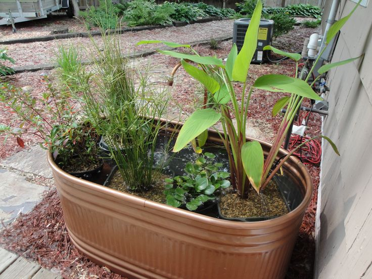 Copper Stock Tank Water Garden: Purchase A Galvanized Metal Stock Tank And  Spray Paint With A Hammered Copper Paint. Add Plants, Water Pump, And Water.