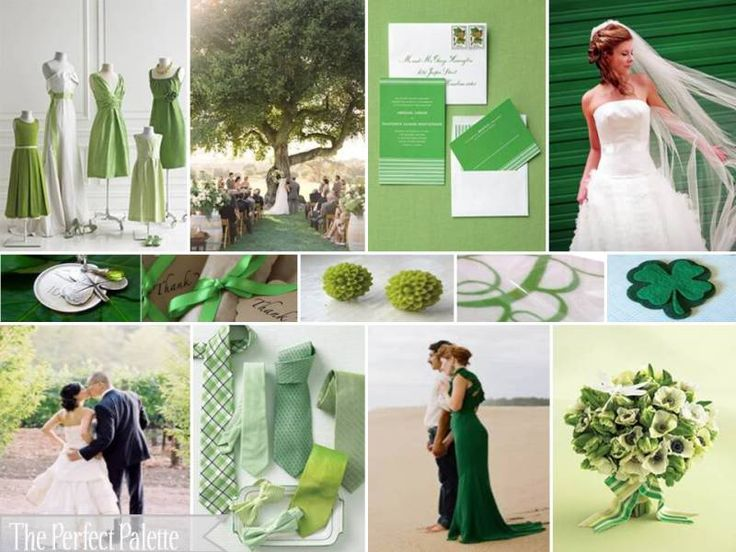 Its Day 3 Of Our Celebration For The Love Color Green