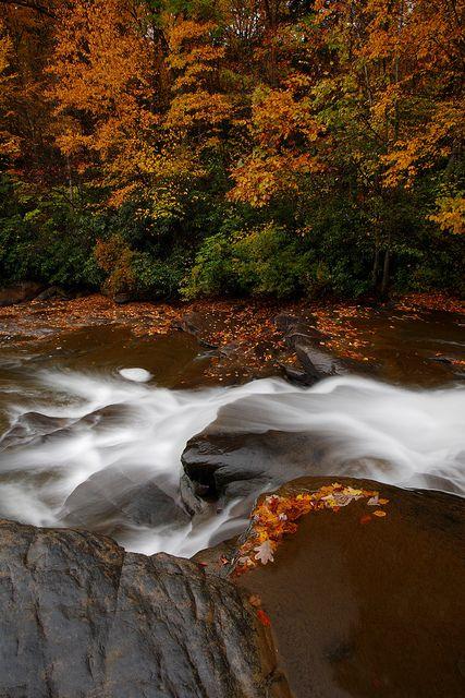 Fall colors at Meadow Run, Ohiopyle, Pennsylvania