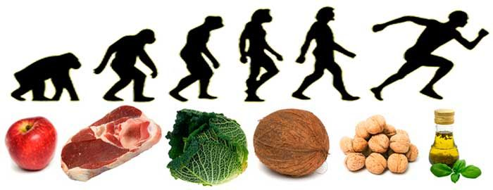 Evolución con dieta paleo