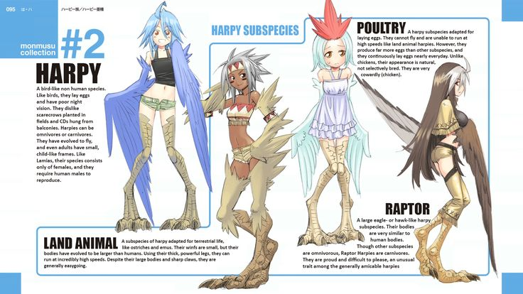Sub-species for the so known species in monster musume, really awesome and…