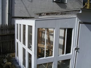 Here's a project I'm considering: a DIY lean-to greenhouse made of old windows.