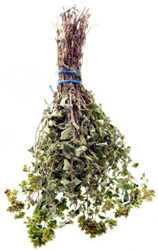 Tips On Harvesting Oregano And How To Dry Oregano