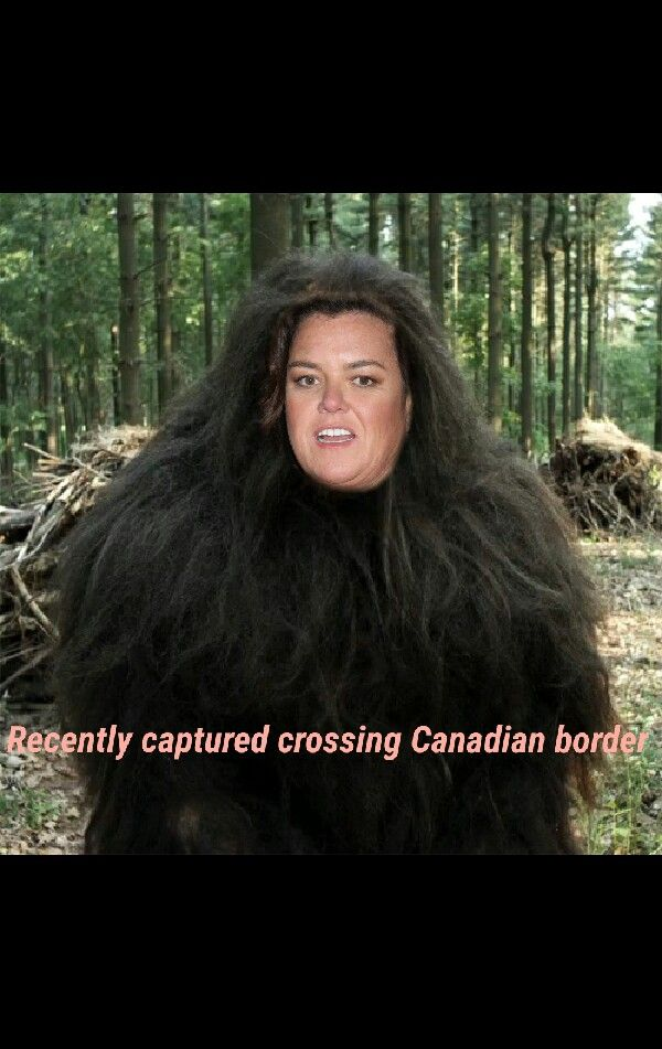 At least one Hollywood Liberal tried to move to Canada.