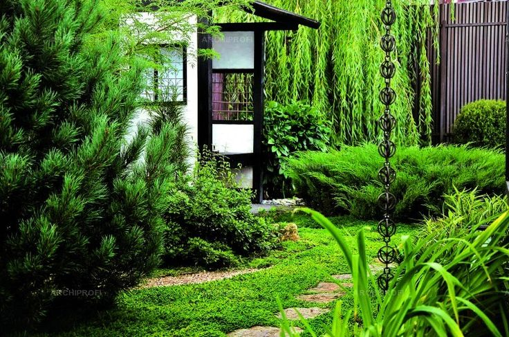 Красота по-японски: частный сад в Подмосковье
