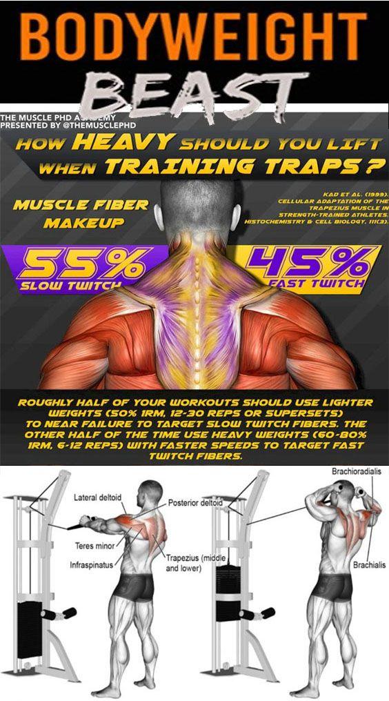 Bodyweight Training Traps Beast Mode e40c63ccf51a