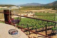 Ruta del vino, Ensenada B. C. Mex.