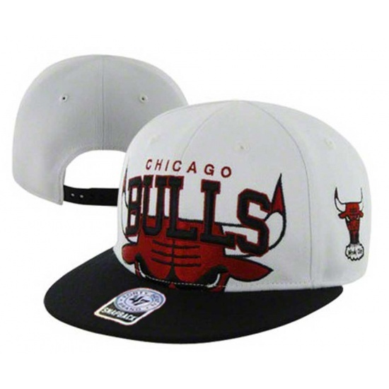 960 best all bow to the mighty chicago bullschicago bulls
