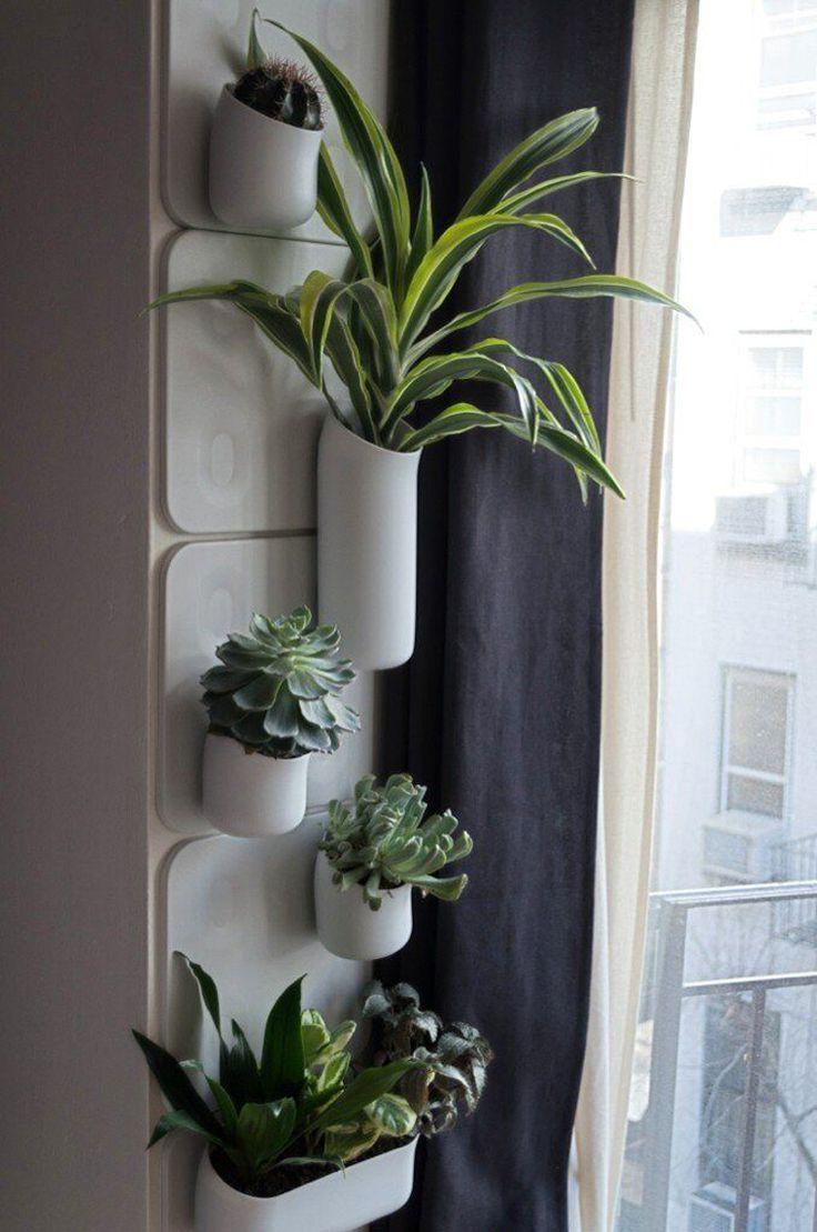 2193-wall-planter-18.jpg : EXAMPLE.PL – dajemy dobry przykład !