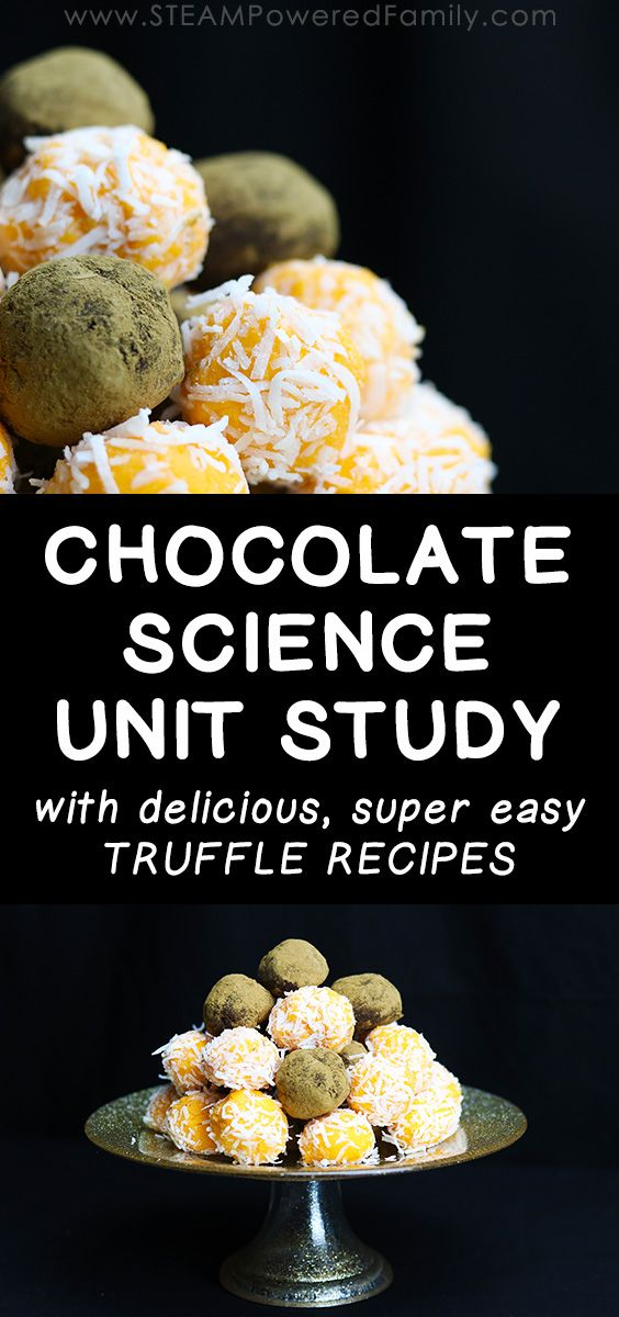 97 best food science images on pinterest science experiments massive chocolate science unit study simple truffle recipe forumfinder Images