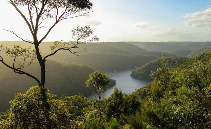 The Ten Best Camping Getaways from Sydney | Concrete Playground Sydney