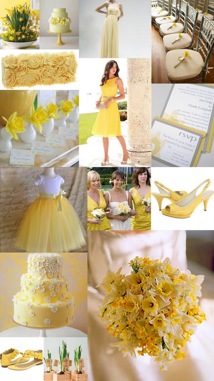 Google Image Result for http://1.bp.blogspot.com/-W6j65Z-Wp5A/TaUSo2gsy6I/AAAAAAAADfk/2b6P00F_vmE/s1600/wedding%2Bcolor%2Binspiration%2Bspring%2Bdaffodil%2Bpale%2Byellow%2Bsunshine%2Byellow.jpg
